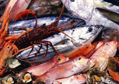 Food_Seafood_Seafood_012061_